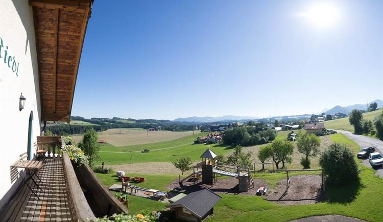 2016-06-23-Riedlwirt-Gastgarten-187 (1)