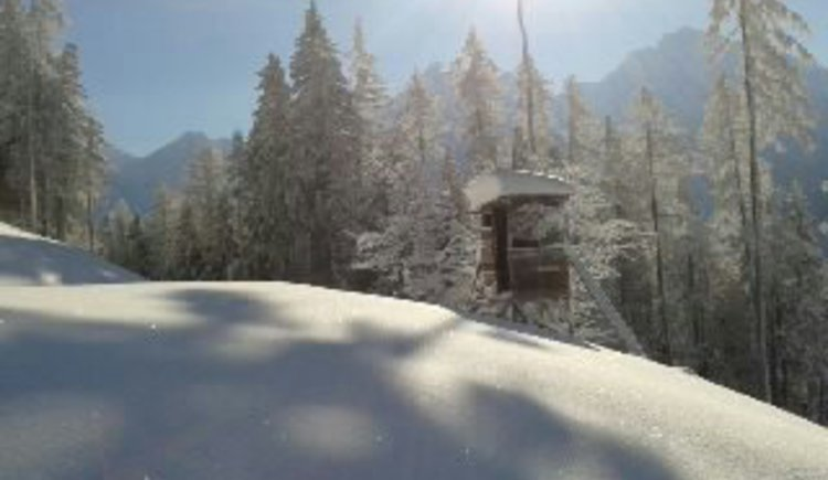 Winterwanderung, Schneeschuhe, Tourenschie, Rodeln\n