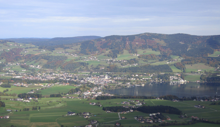 Aerial view - view of the landscape, the town, the lake