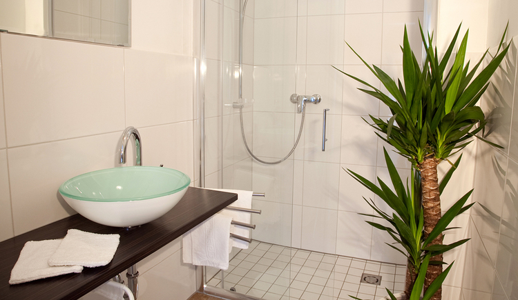 bathroom with shower, Palm on the side