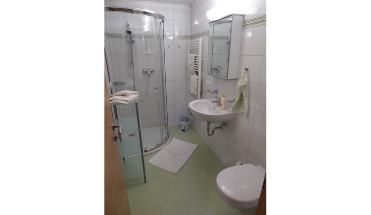 bathroom with right the toilett, than the Bassin and the mirror, in the back the towelheating and on the right the shower.