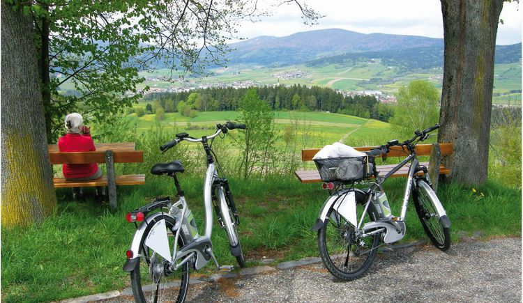 E-Bike-Tour (© ****Pension Mühlblick)