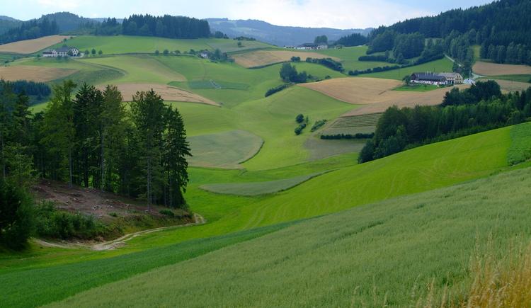 Um Kaltenberg (© Gemeinde Kaltenberg)