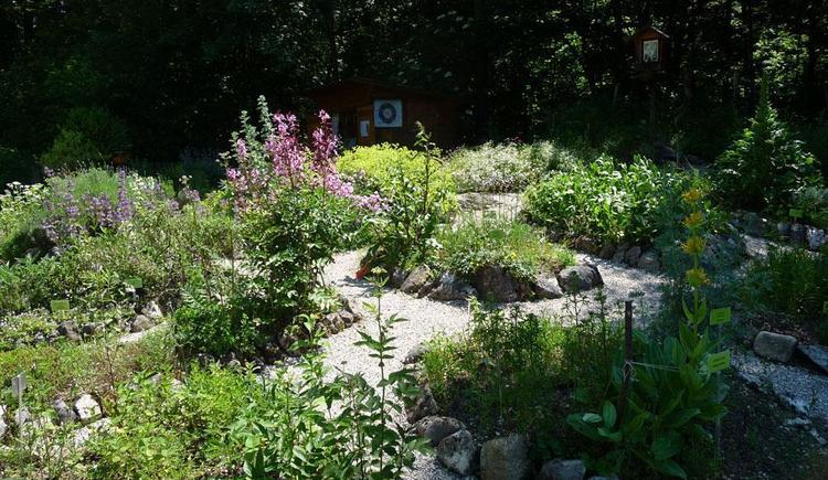 Kräutergarten (© Sophie Brandstätter)