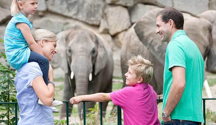 Besuch mit der Familie im Tierpark in Wien (© Harald Eisenberger)