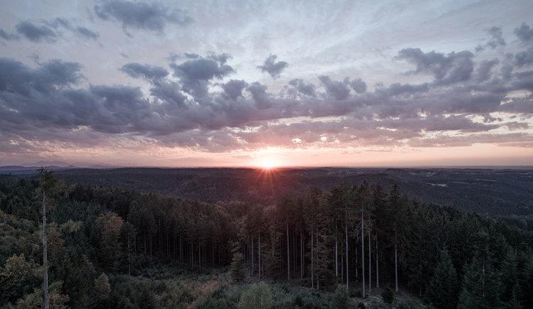 Sonnenaufgang im Kobernaußerwald im Innviertel. (© Oberösterreich Tourismus GmbH/Robert Maybach)