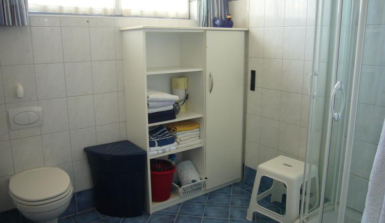 Großzügiges hell eingerichtetes Badezimmer mit Dusche und WC
