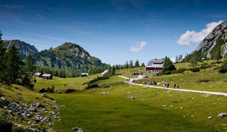 6-Seen-Wanderung Tauplitzalm (© Tourismusverband Ausseerland - Salzkammergut/T. Lamm)