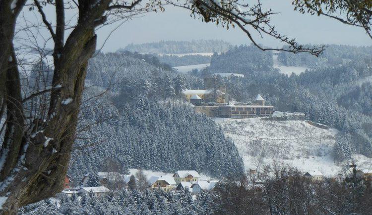 Ansicht Burg Kreuzen (© Schiller Margarete)