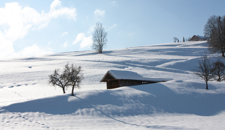 Verschneites Mondseeland (© © TVB Mondsee-Irrsee)