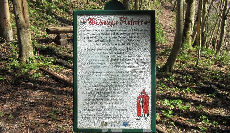 Schild im Wald mit Informationen zur Ruine Wildenegg