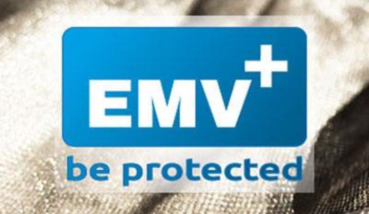 Logo + Silber (© emv +)
