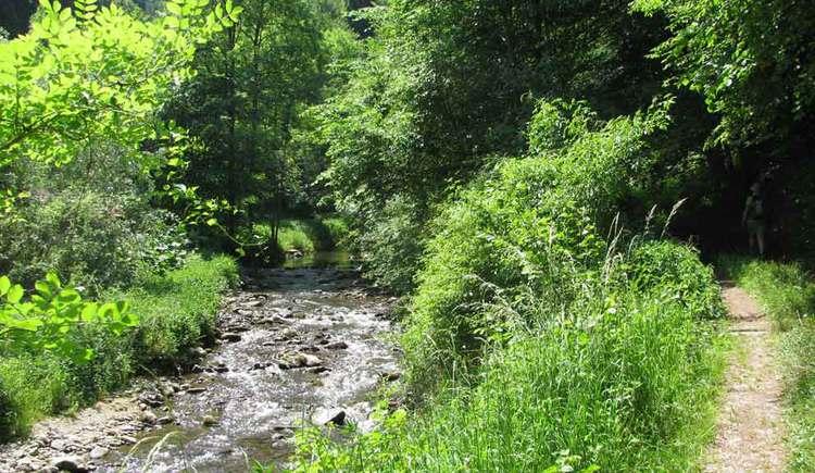 Engelhartszell, Wanderung, Natur