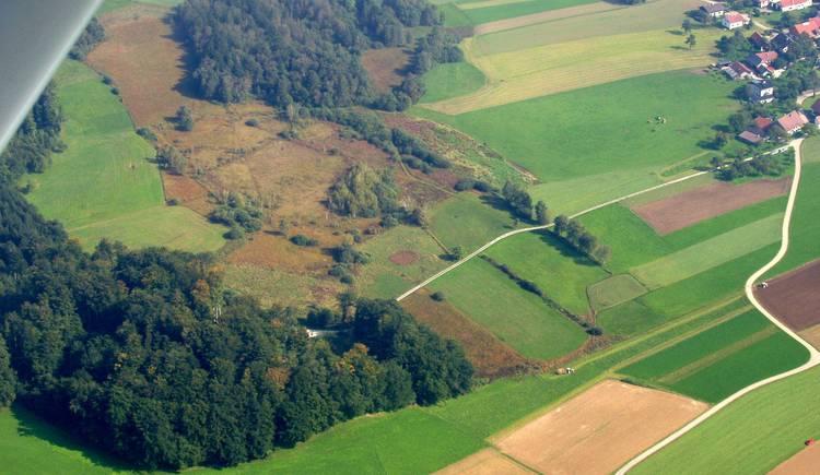 2005 Gerlhamer Moor von NW.jpg (© Bgm. Mag. Reiter)