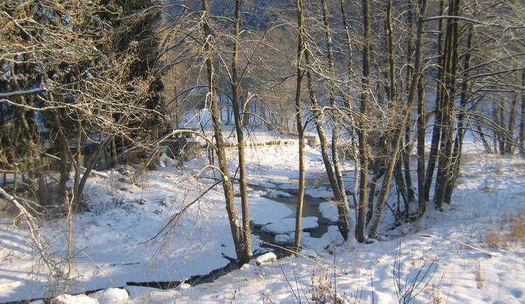 Winter in Schönau (© Mühlviertler Alm)