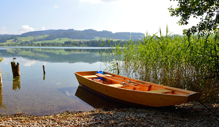 View of the lake in the foreground of a rowing boat, reeds, in the background the landscape