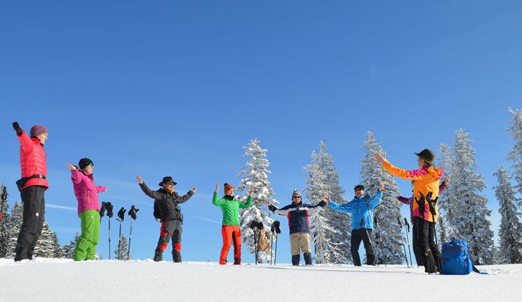 Waldness im Almtal im Winter Wyda Übungen unter professioneller Anleitung vom WALDNESS Coach. (© Tourismusverband Almtal-Salzkammergut, Foto Nadine Bammer)
