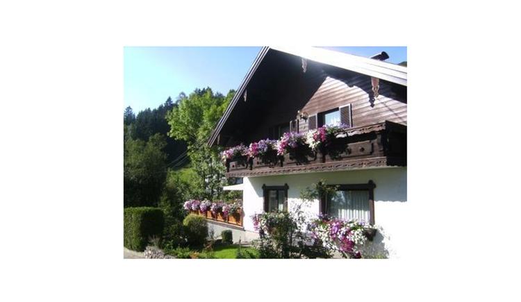 Blick auf das Haus mit Balkon und Balkonblumen, seitlich Hecke und Wald