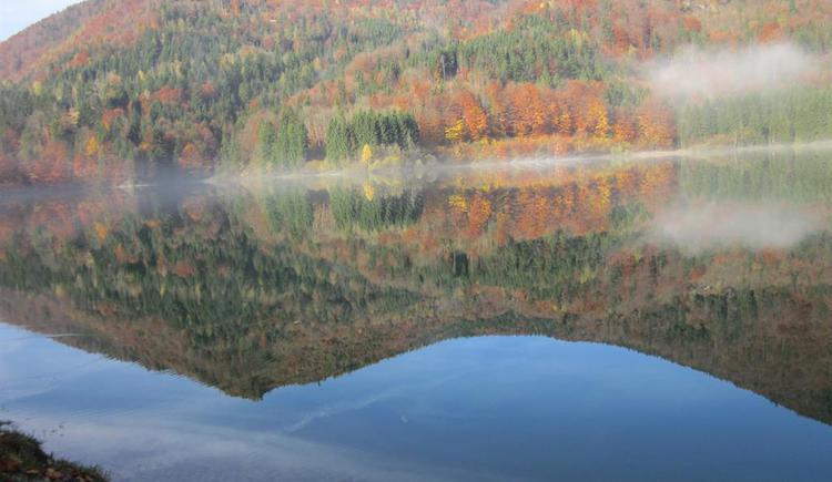 Herbst - Wiestalsee (© Hölzl)