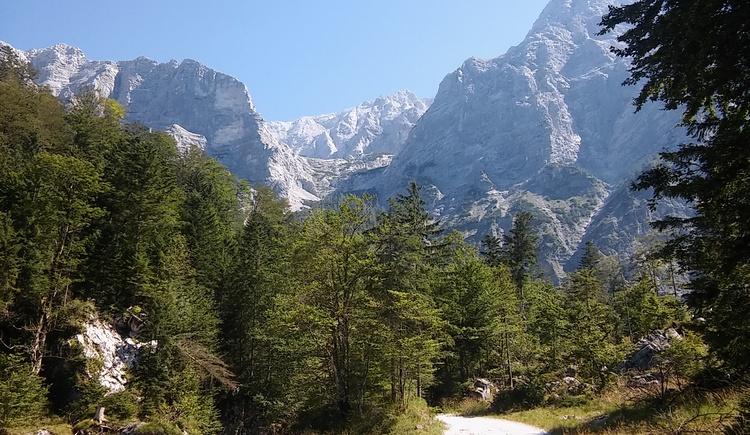 Auf dem Weg zum Einstieg ein herrliches Bergpanorama. Links der Zwillingkogel und rechts der Schermberg.