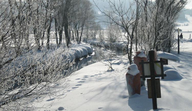 Langlaufen entlang der Töpferweg-Loipe (© Touristik Mühlviertler Kernland)