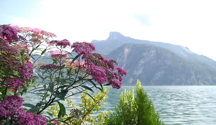 Urlaub in einer der sch\u00f6nsten Ferienregionen. (© Familie Schindlauer-Blümelhuber)