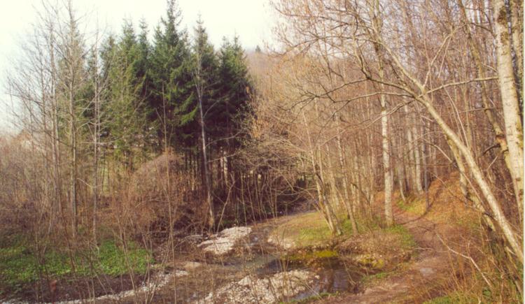 Rundwanderweg Hofgraben