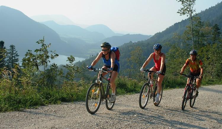 Mountainbike-Strecke: Sonnberg (© Tourismusverband Faistenau)
