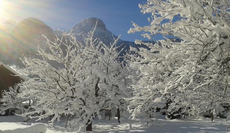 Aussicht auf die wunderschöne Obertrauner Winterlandschaft. (© J. Lindemann)