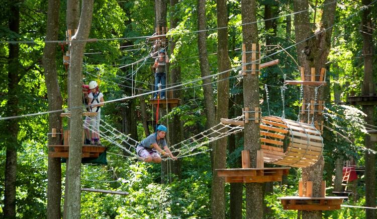 Action im Kletterwald Goldberg ist garantiert !!