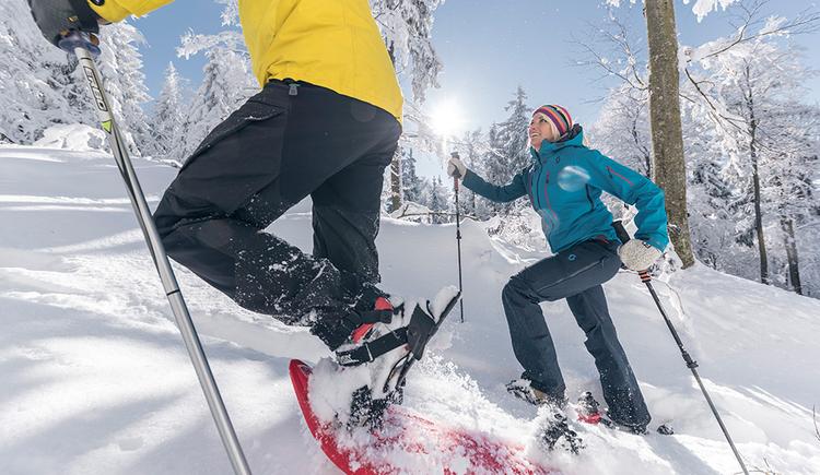 Schneeschuhwandern (© OÖ Tourismus David Lugmayr)