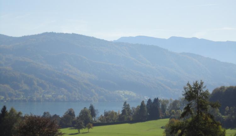 Gerlhamer Moor (© Ferienregion Attersee-Salzkammergut)