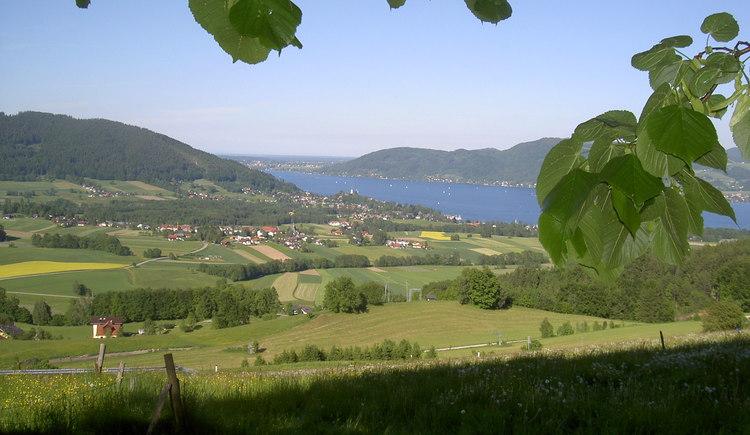 Kronberg, Blick Attersee. (© TV Ferienregion Attergau)