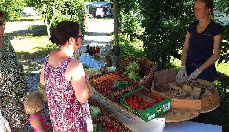Vegetables and fruit of the organic shop Bilobi in Strobl