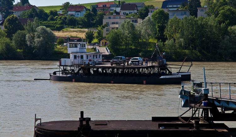 Donaufähre Ottensheim (© © WGD Donau Oberösterreich Tourismus GmbH / Kranzmayr)