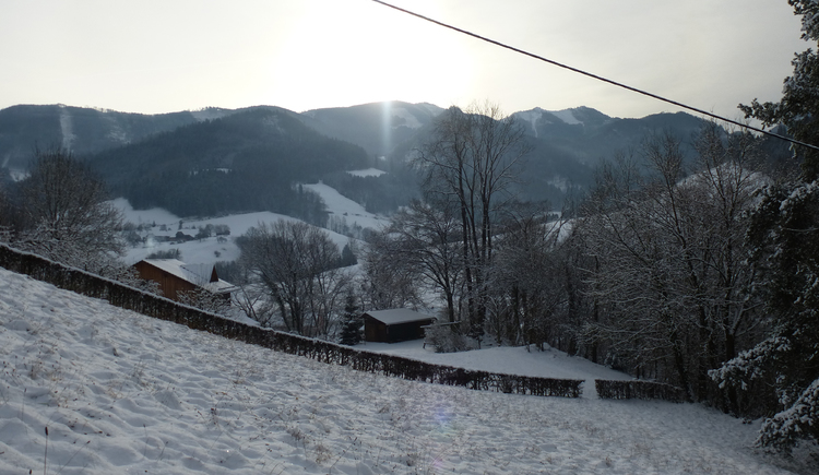 Ferienhaus Rosalinde - Bergblick von der Wiese