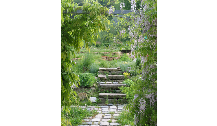Blick in den Garten mit Sträucher, Pflanzen, mit Steinen gelegter Weg