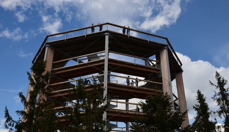 Der Baumkronenweg in Lipno ist ein begehrter Aussichtspunkt