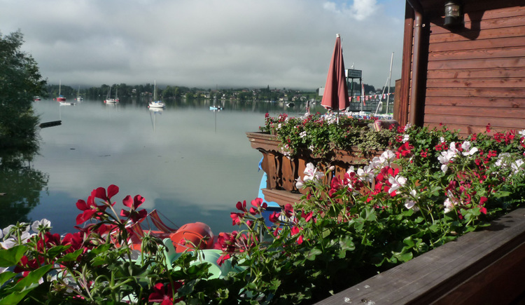 View from the balcony, in the front the balcony flowers, view of the lake, various boats, in the background mist