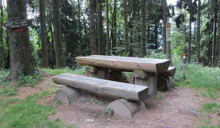 bench and table, trees