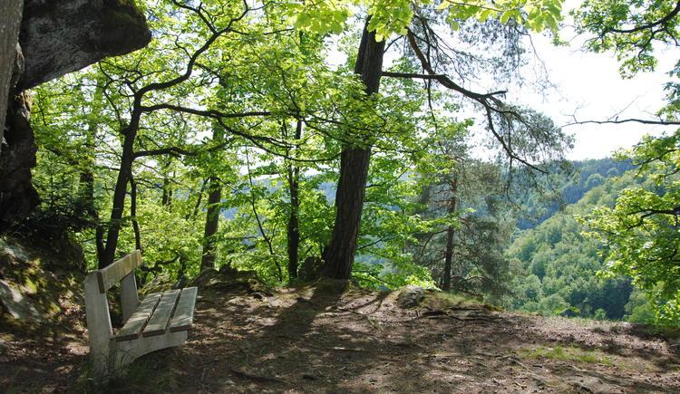 Wandern im Rannatal (© TV Pfarrkirchen)