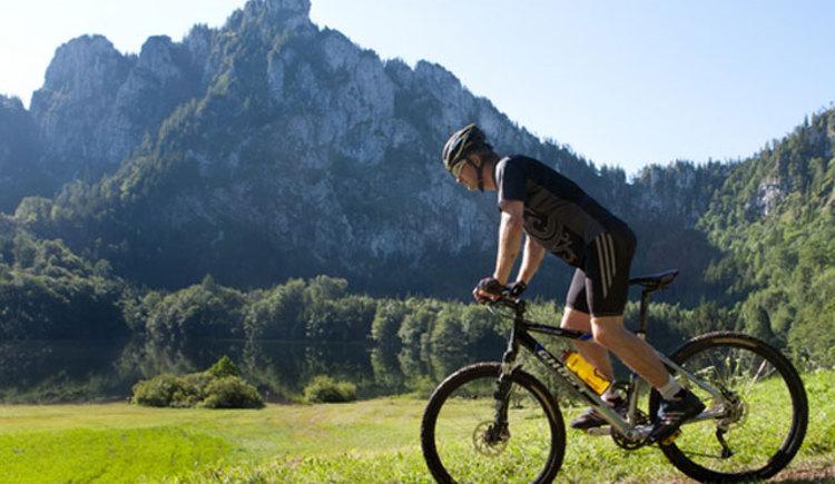 Mountainbiker beim Laudachsee, Grünbger bei Gmunden. (© Ferienregion Traunsee)