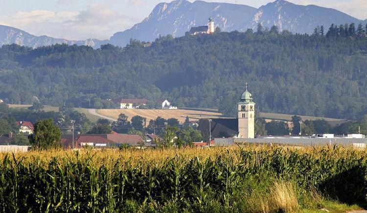 Blick \u00fcber Pettenbach mi Almtal auf den Magdalenaberg mit Kirche. (© Marktgemeinde Pettenbach)