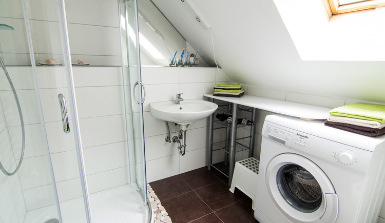 Bathroom with shower, sink and washing machine