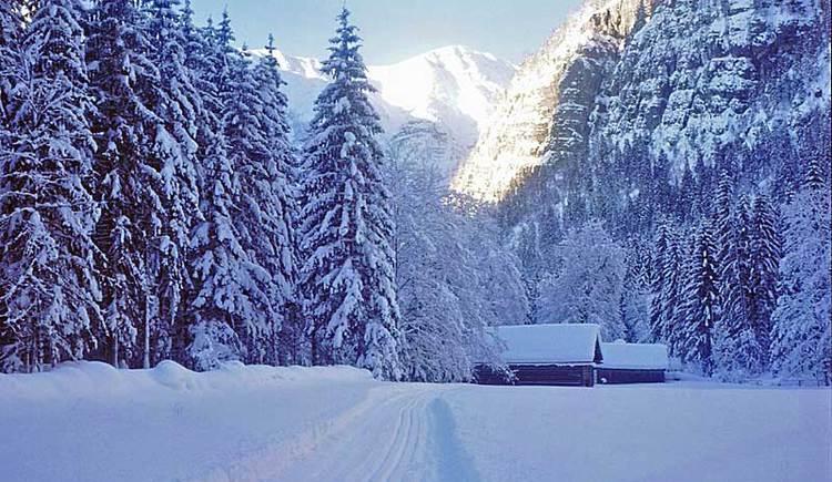 cross country ski trail in Obertraun