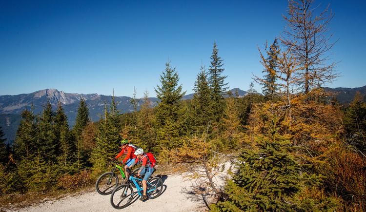 Auch mit dem Ebike ist die Seekar Runde aufgrund der gut ausgebauten Forststraßen in Gosau ein gemütliches Mountainbike Erlebnis. (© bikeboard.at Erwin Haiden)