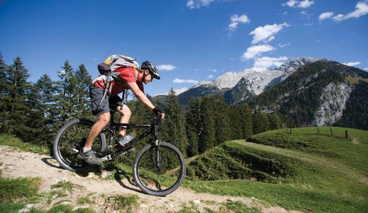 viele ausgeschielderte Mountainbikestrecken