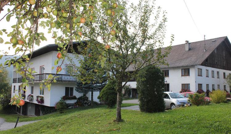 Ferienwohnung Bauernhof Kreutzer im Attergau
