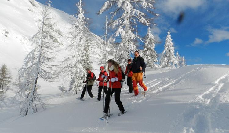 Geführte Schneeschuhwanderung (© Norbert Kasper)