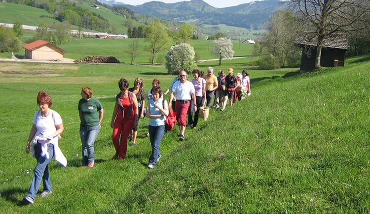 Wanderer auf einen Feldweg